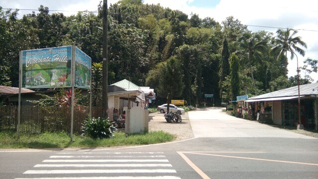 This is the road going to Chocolate Hills Complex. It was taken from the main road. The view deck is about 300 meters hike.