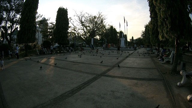 Pigeons are all over Plaza Rizal Park in Tagbilaran City.