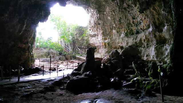 An inside-out view from the cave itself.