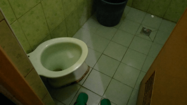 Close-up look at the toilet bowl and the flooring of the comfort room.