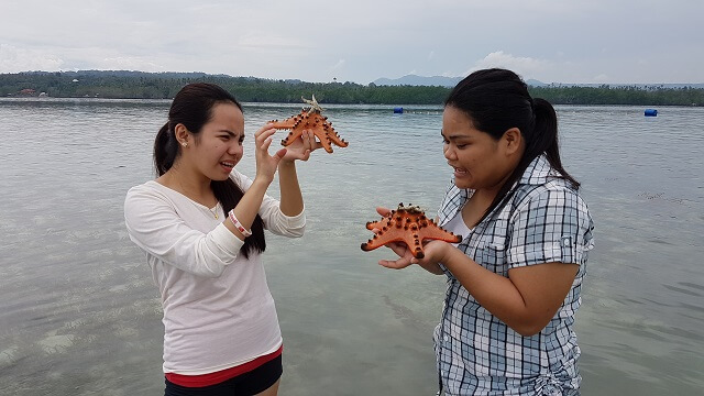 April and Kam are checking the starfish on their hands. Notice a small white starfish on the of the orange starfish; another specie of a starfish.