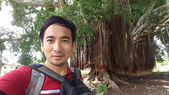Giant Balete Tree. One of the attractions in Talicud Island.